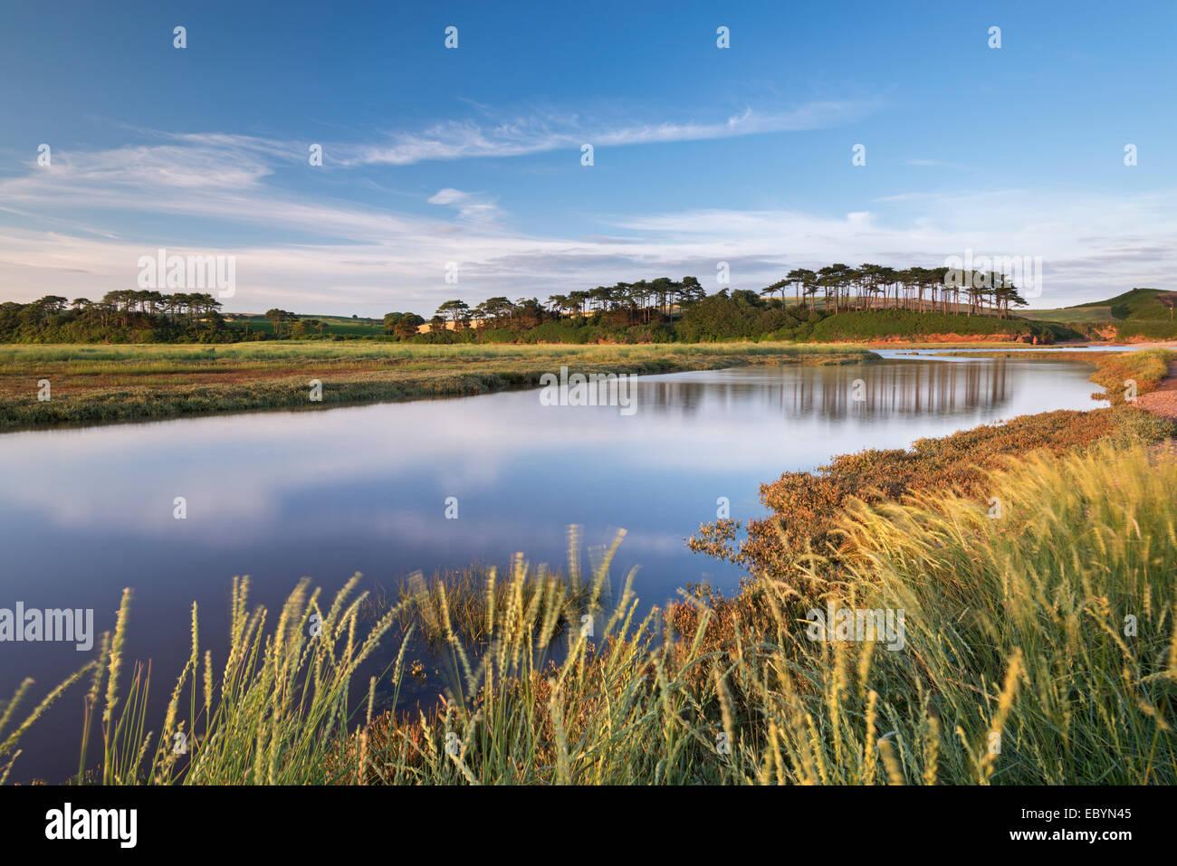 Otter Estuary at Budleigh Salterton, Devon, England. Summer (July) 2014. - Stock Image