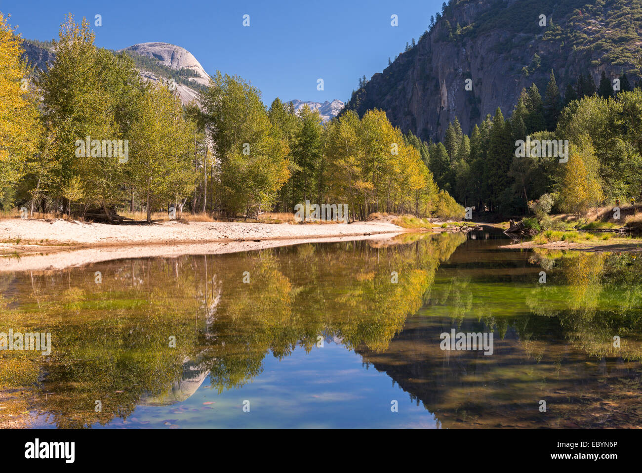 Autumn colours along the banks of the River Merced, Yosemite Valley, California, USA. Autumn (October) 2014. - Stock Image