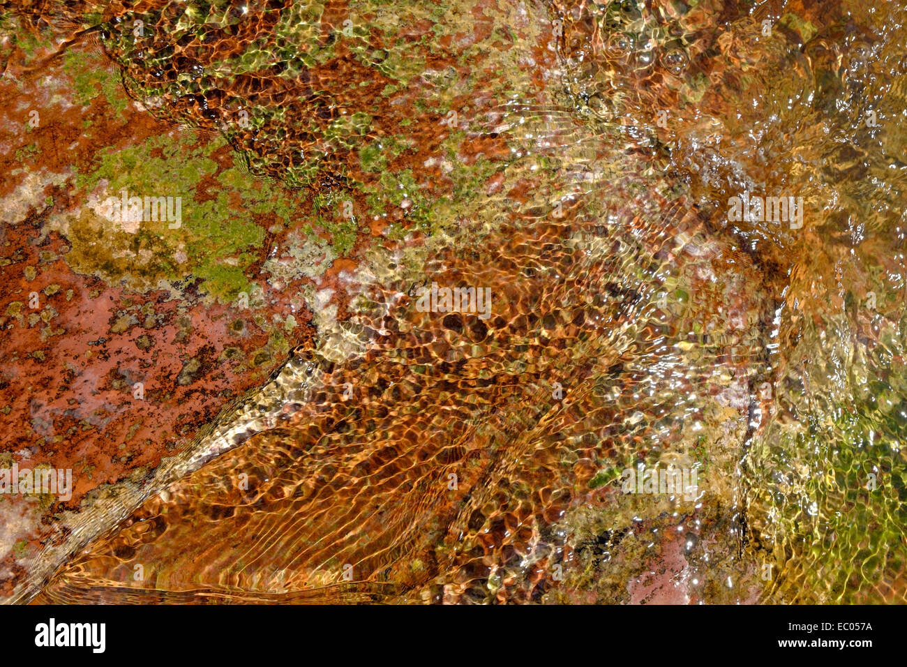 A stream flowing over colourful red rocks and green algae in a river in Arizona. - Stock Image