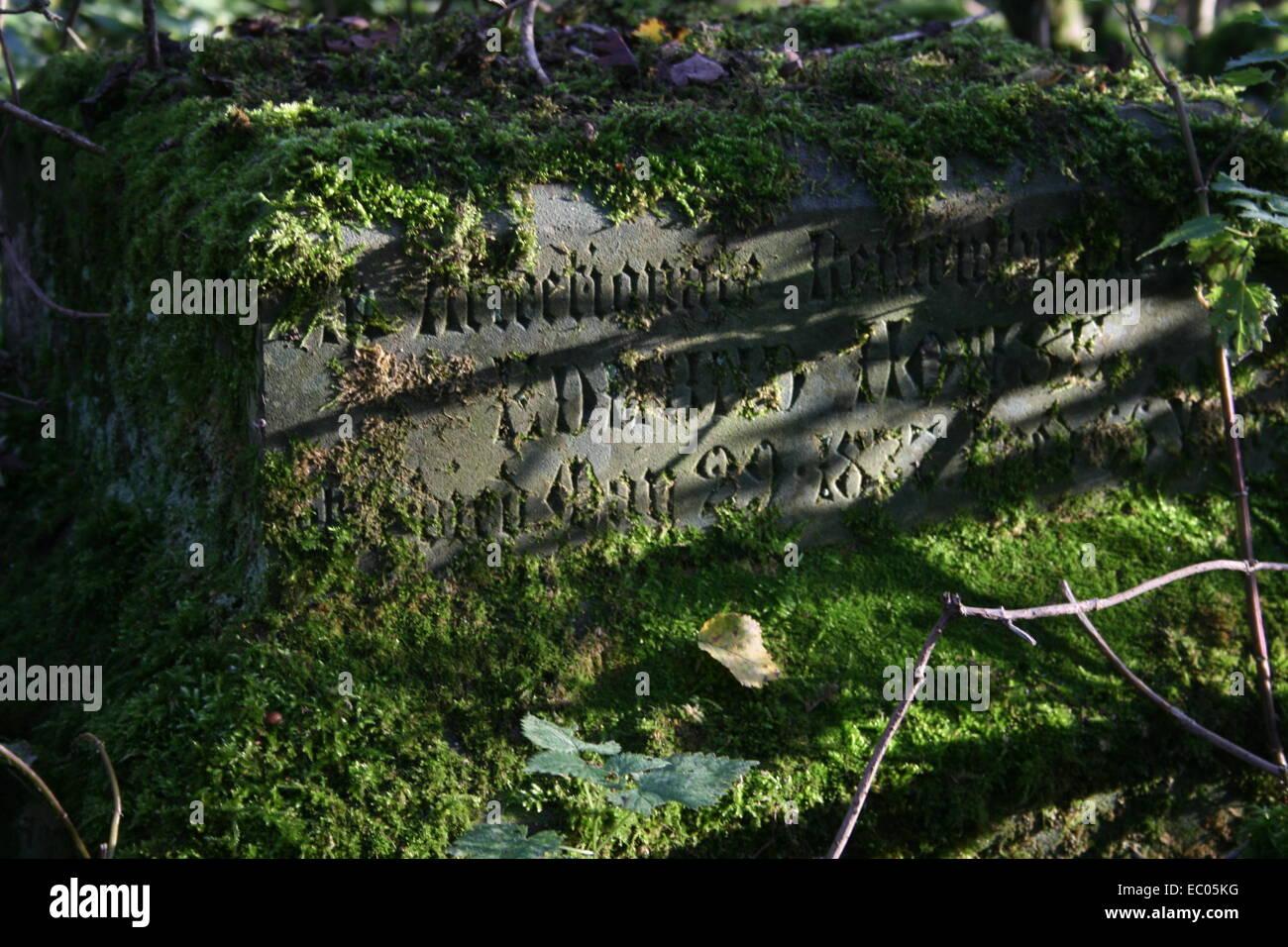 Abandoned St Mary's Churchyard, Eysey, near Cricklade, Thames path - Stock Image
