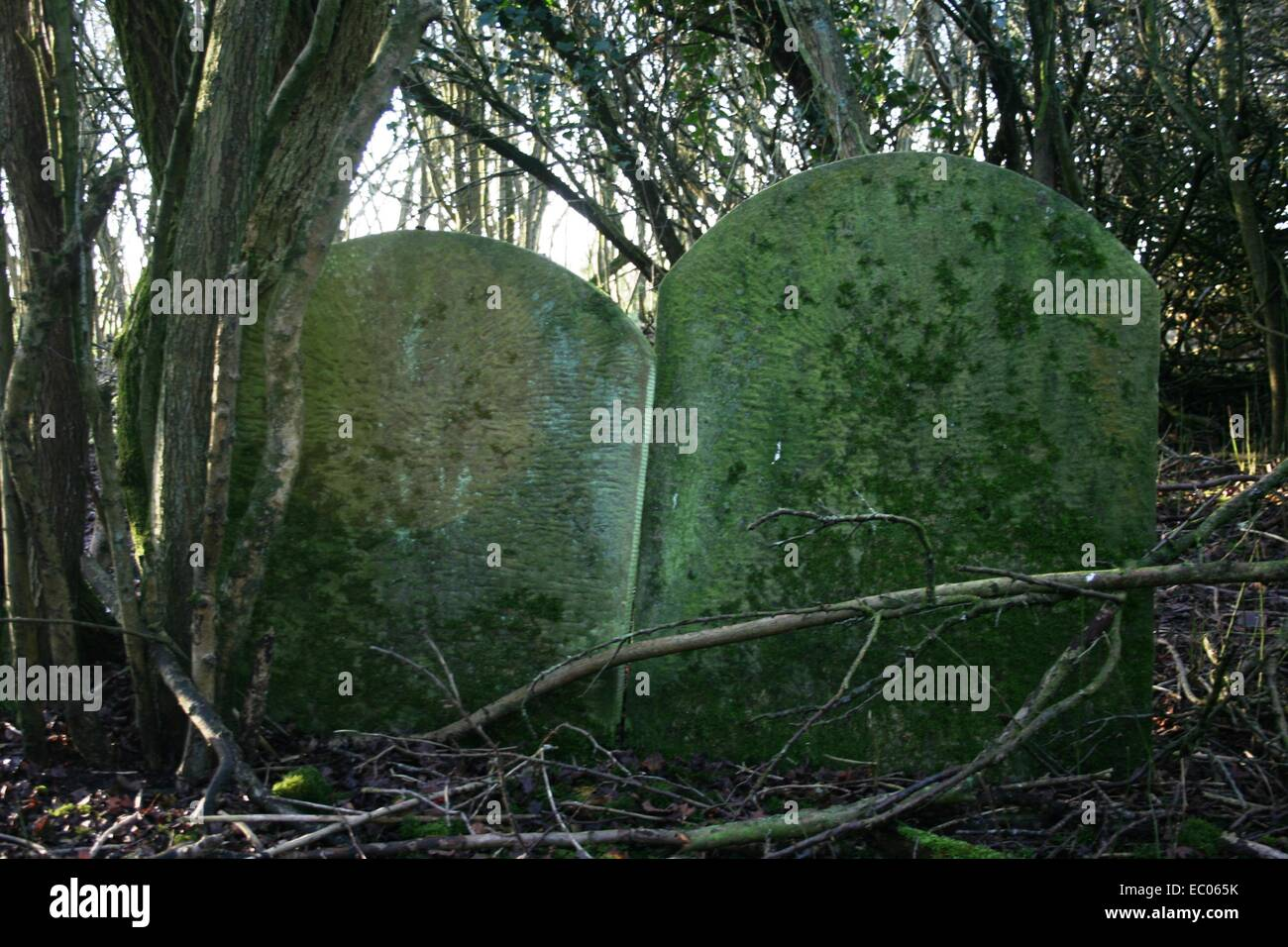 Abandoned St Mary's Churchyard, Eysey, near Cricklade, Thames path - Stock Image