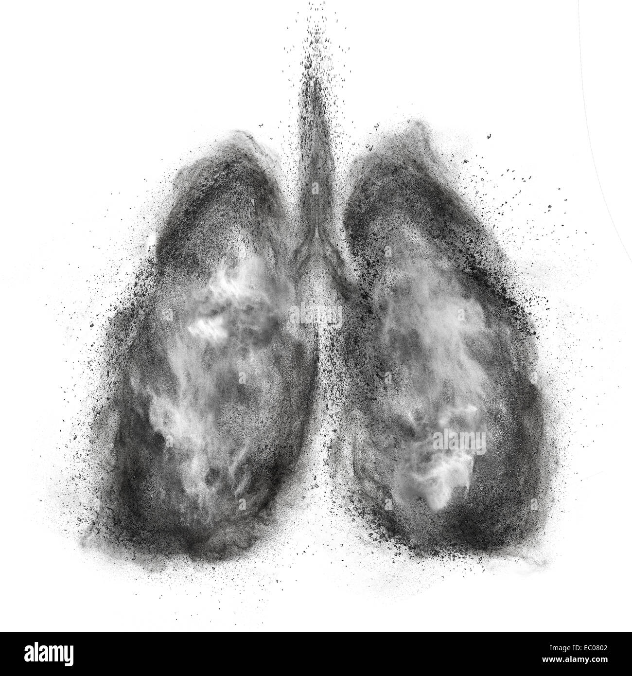 Lungs made of black powder explosion isolated on white background - Stock Image