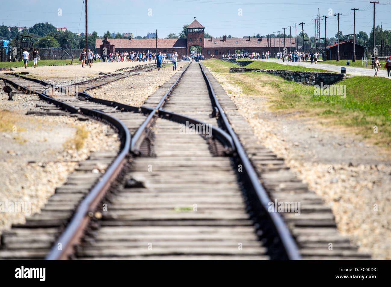 Train tracks into Auschwitz Birkenau Concentration Camp, Poland - Stock Image