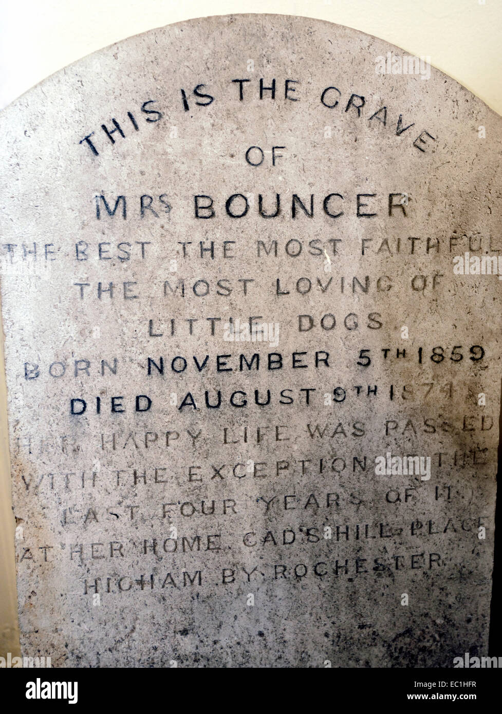 """Grave of Mrs Bouncer, Charles Dickens's dog, 1859-74, at his home, Gad's Hill Place, Higham near Rochester. """"The Stock Photo"""