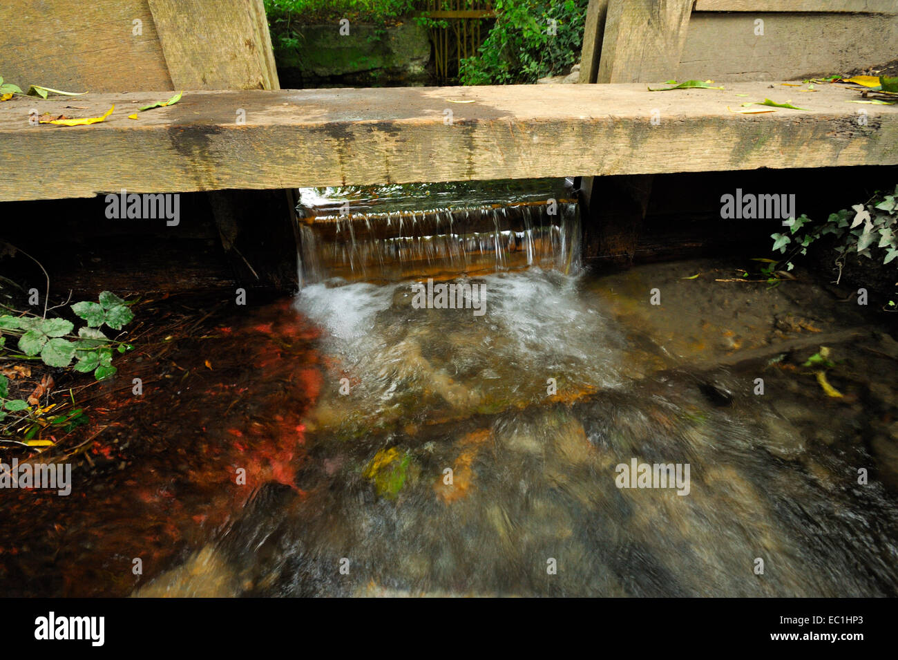 Cloisterham Weir possibility – a small weir on the Holborough Marshes by the Medway. The true site of the murder - Stock Image