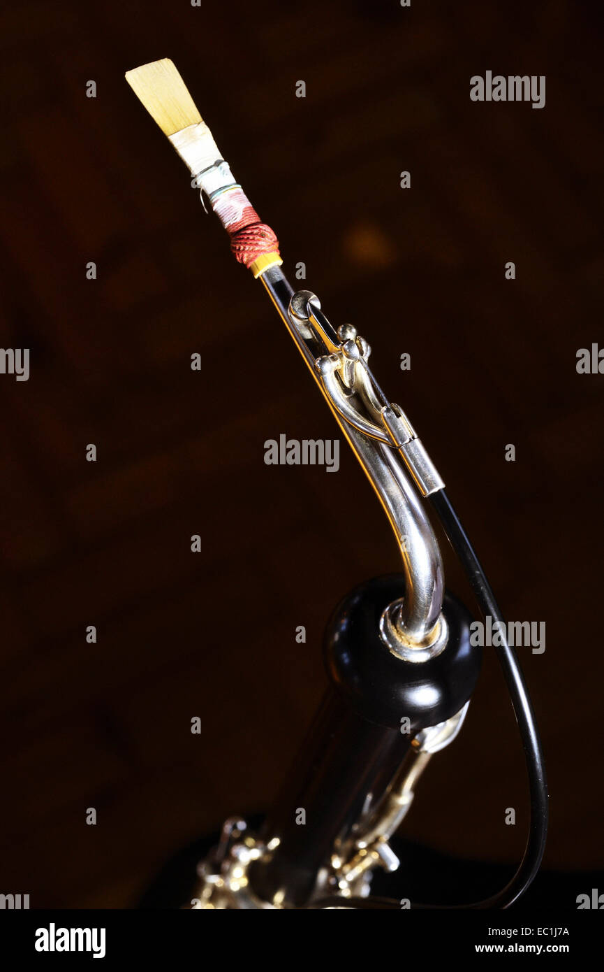 Lupophon, reed, crook - bocal, '4th octave key' Ð a special vent on the crook enabling notes in the - Stock Image