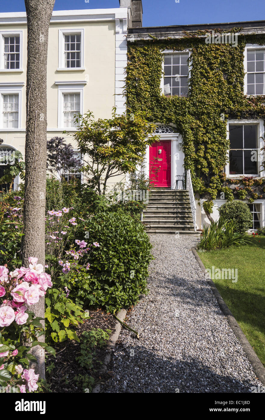 Georgian doorway and houses by the sea, Sandycove, Co. Dublin, Ireland, with rose garden - Stock Image