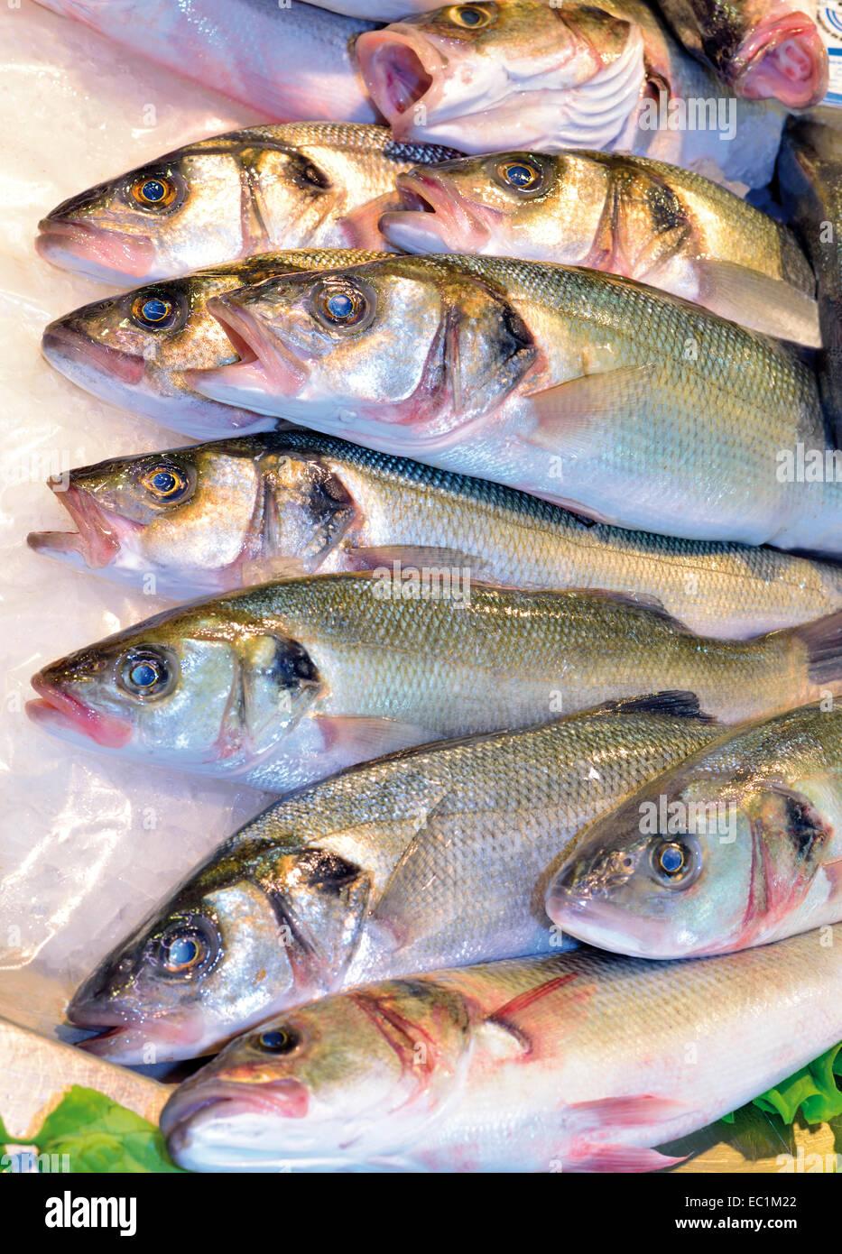 Portugal, Algarve: Fresh fish in the Mercado Municipal in Faro - Stock Image