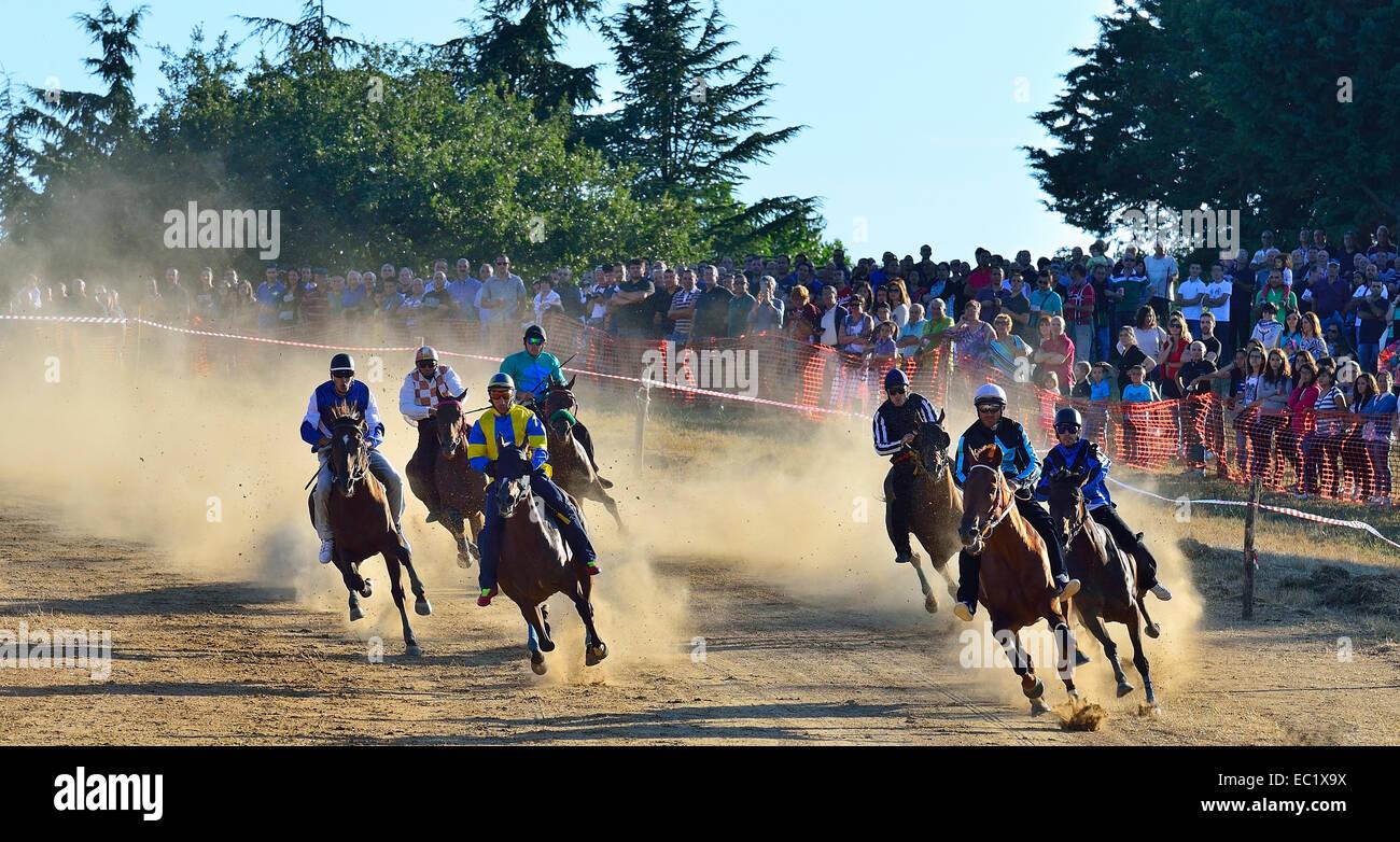 Wild horse race without saddle at the Su Palu de Sa Itria Gavoi festival, Province of Nuoro, Italy, Europe - Stock Image