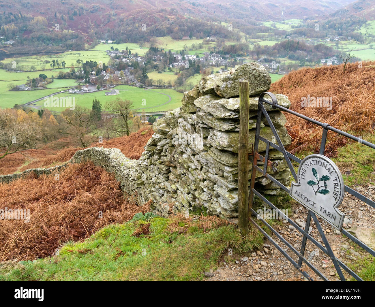 Aerial view of Grasmere Village from path to Alcock Tarn with drystone wall in foreground, Lake District, Cumbria, - Stock Image