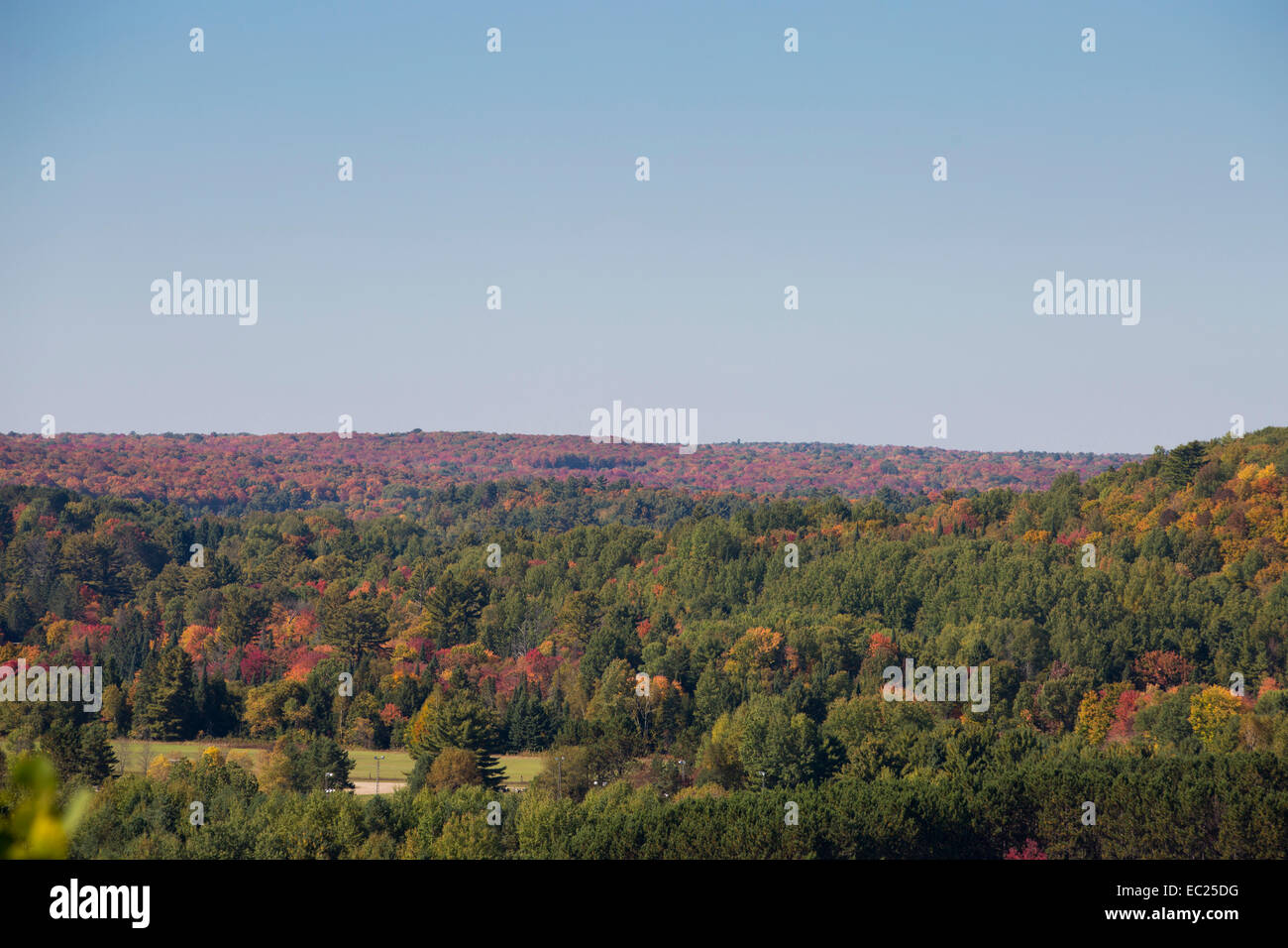 Trees changing color in Ontario in Autumn. - Stock Image