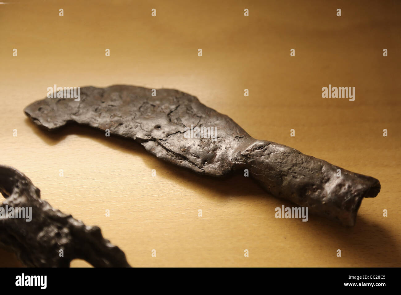 Roman Empire. Facula vieatica. Iron sickle. Used to work in vineyard. 1st c. AD. City History Museum. Barcelona. - Stock Image
