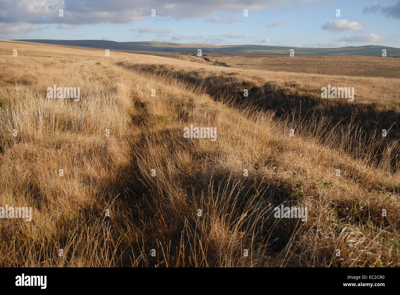 Autumn view in Dartmoor National Park, Devon, England Stock Photo