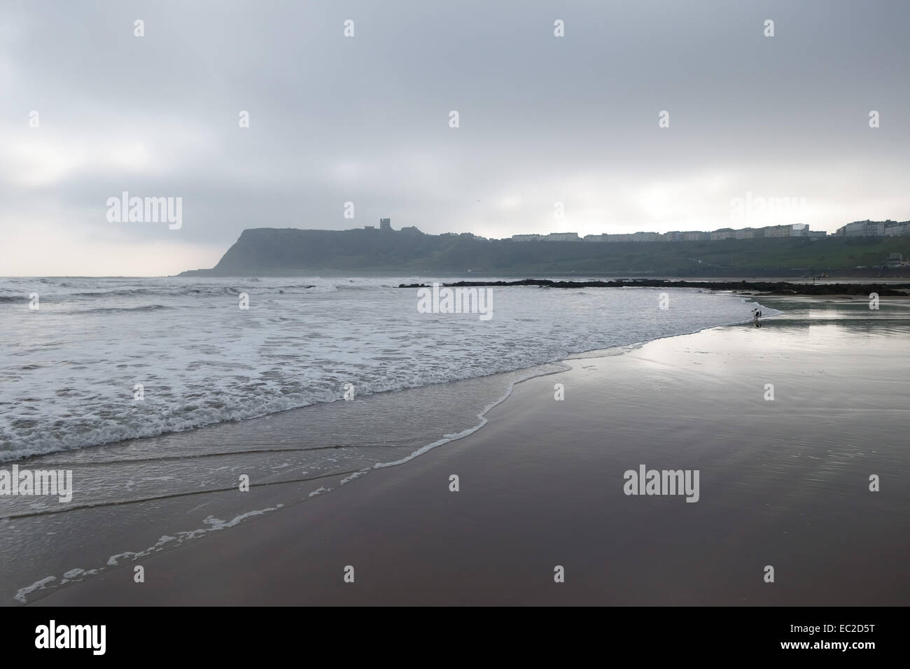 Low tide and a large expanse of sand at North Bay at Scarborough on the north east coast of North Yorkshire threatening - Stock Image