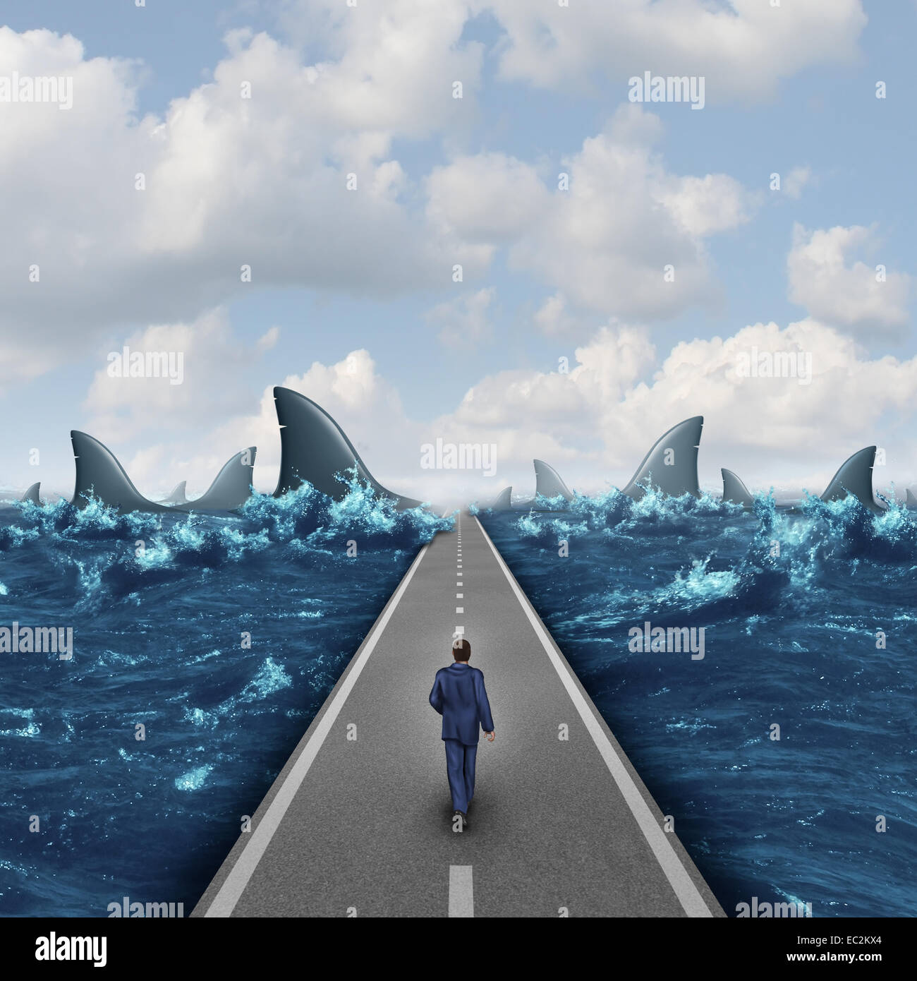 Headed for danger business concept as a man walking on a straight road towards a group of dangerous sharks as a - Stock Image