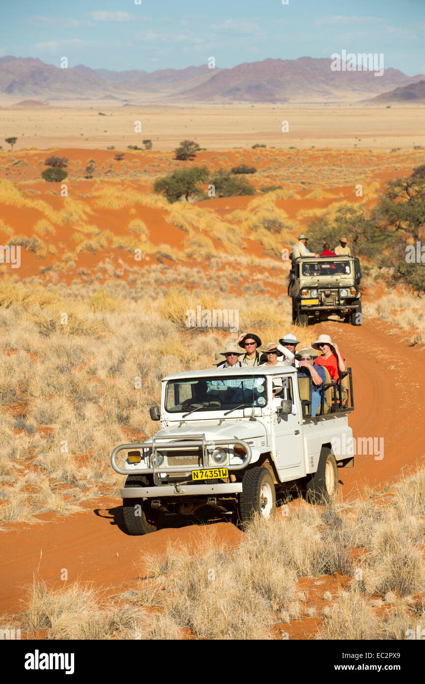 Africa, Namibia. Tok Tokkie Trails hiking and wildlife viewing in truck. Model released. - Stock Image