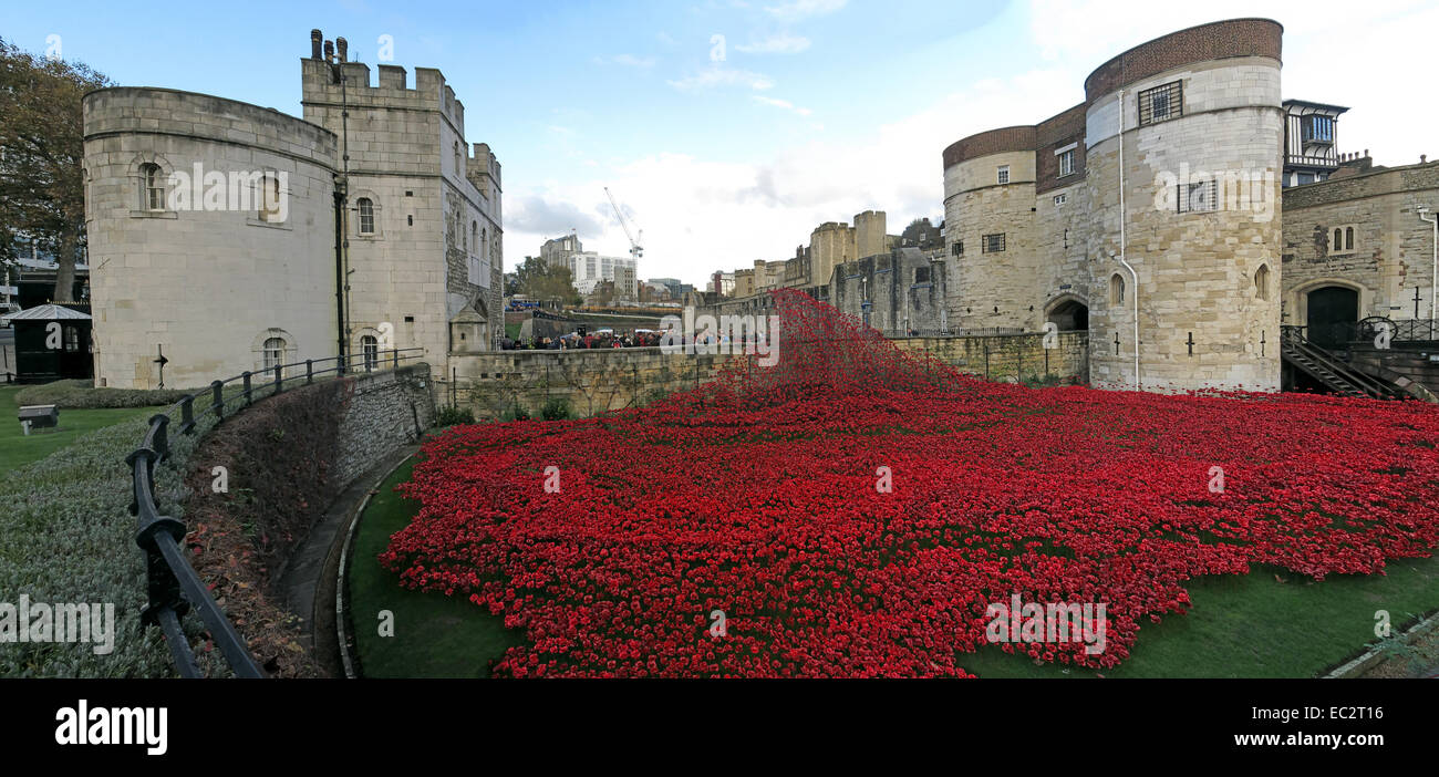 Blood Swept Lands and Seas of Red poppies, at The Tower of London, England UK Stock Photo