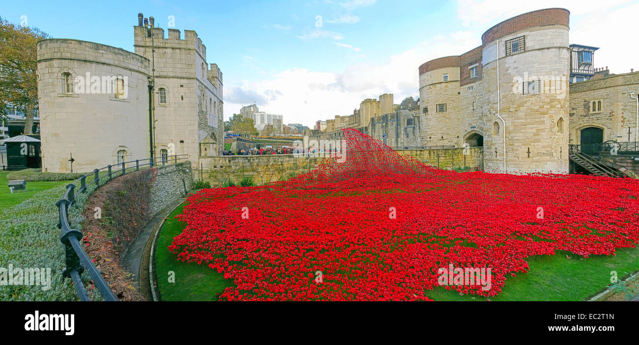 Panorama of Blood Swept Lands and Seas of Red poppies, at The Tower of London, England UK - Stock Image
