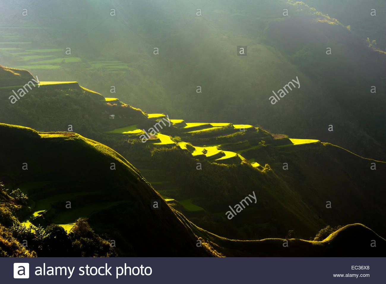 Rice terraces in Luzon's Cordillera Mountains Stock Photo