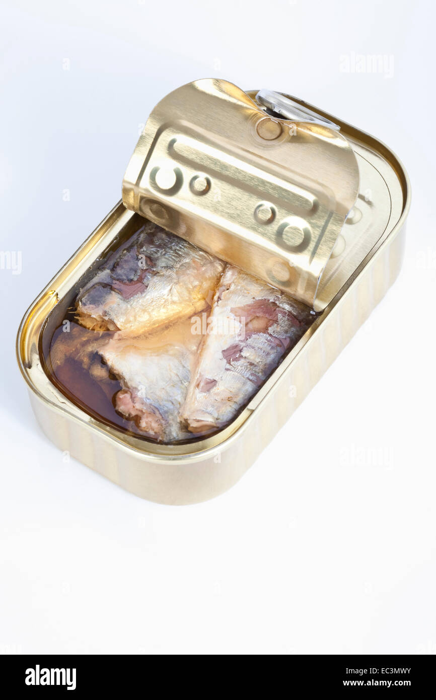 Sardines in a Can - Stock Image