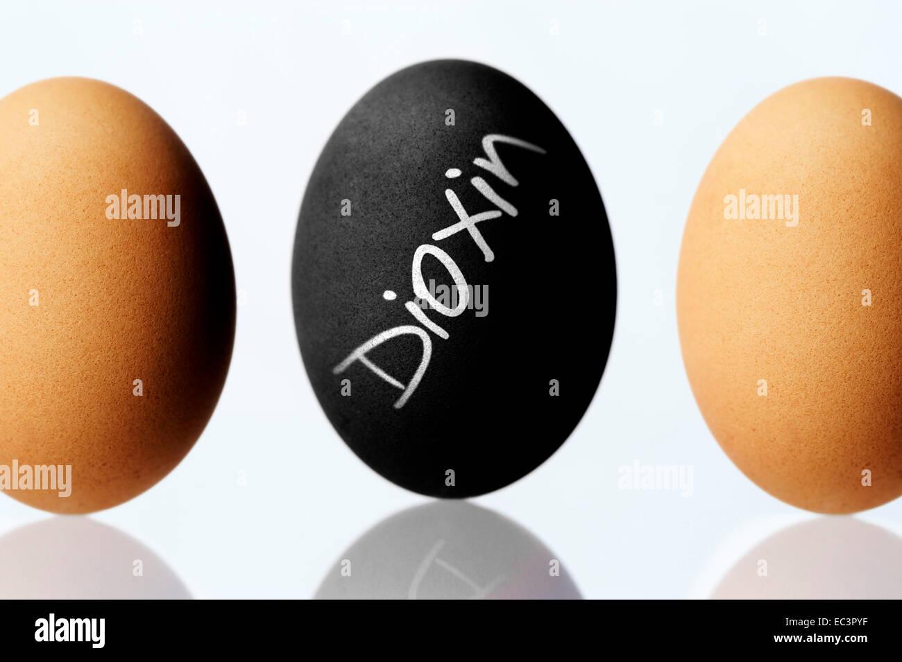 Black hen s egg labeled dioxin, dioxin scandal - Stock Image
