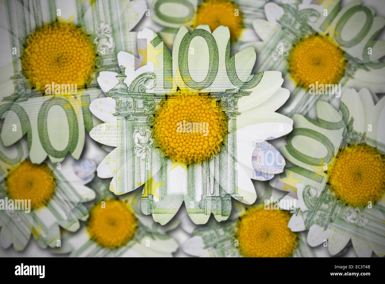 Flowers made of euro banknotes, sustainability - Stock Image