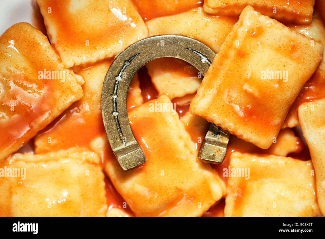 Horseshoe in convenience food, horse meat scandal - Stock Image