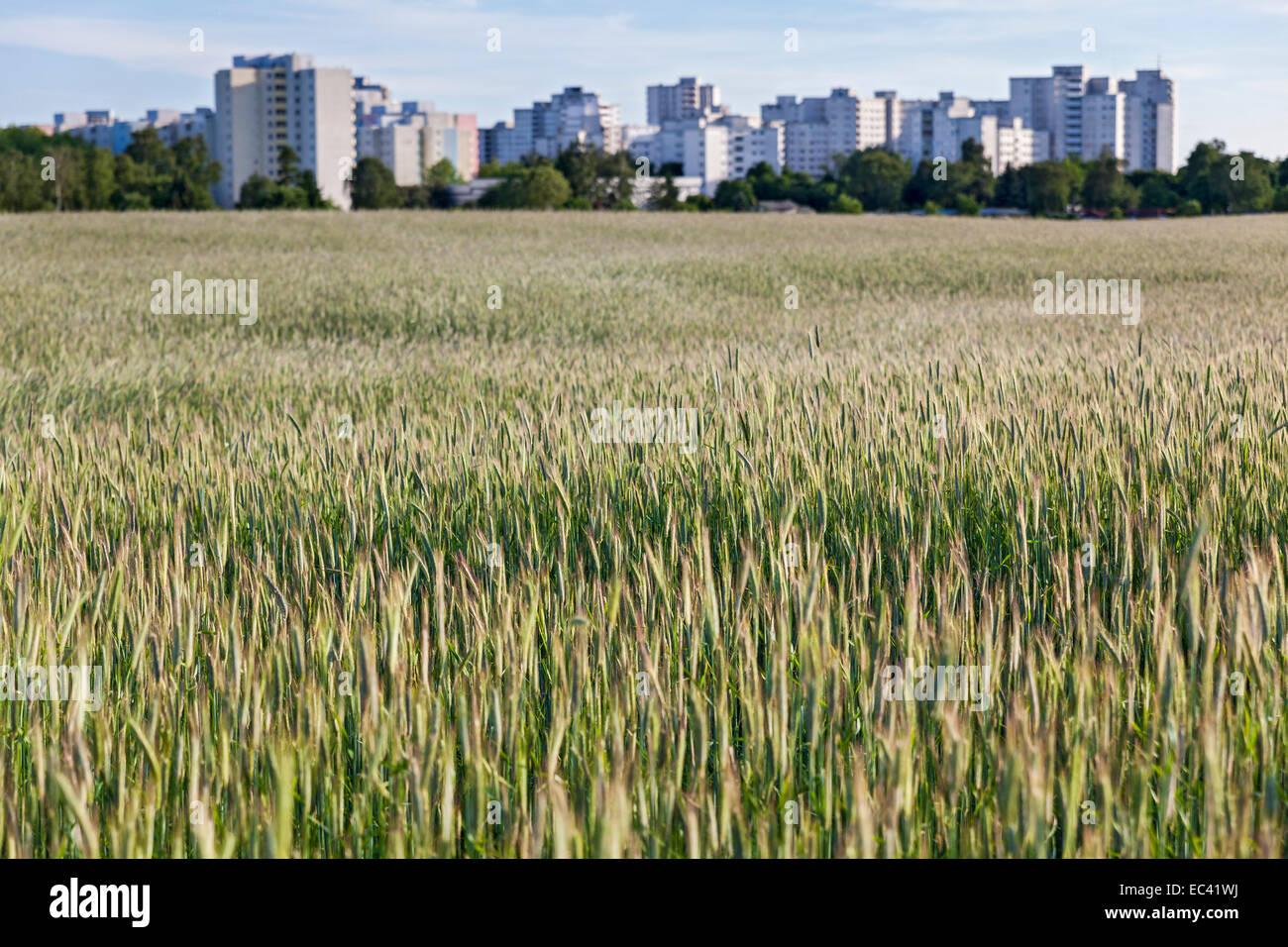 Overlooking a part of Brandenburg in Berlin Reinickendorf district - Stock Image