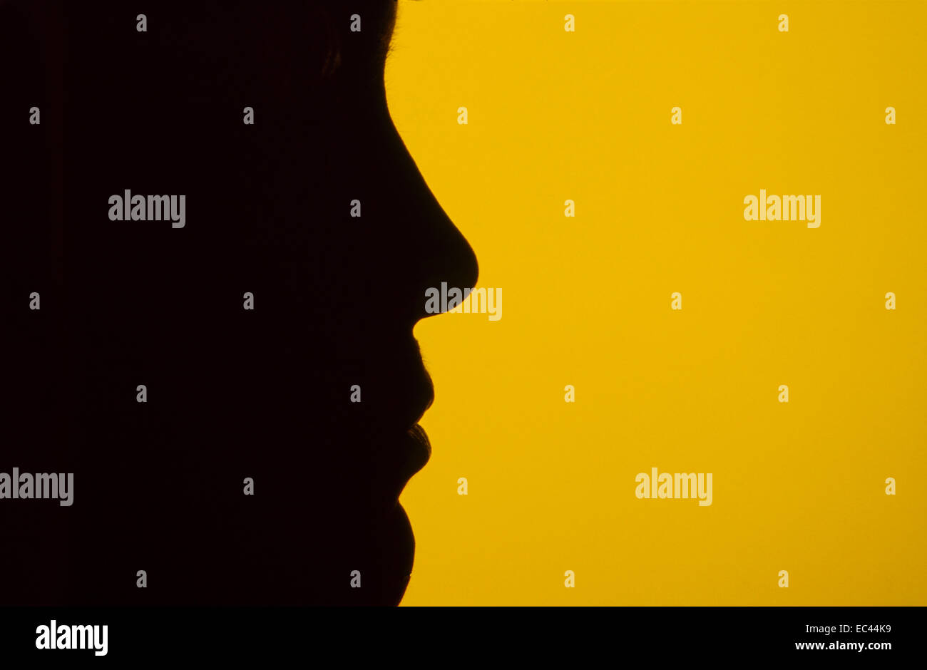 right nose - Stock Image
