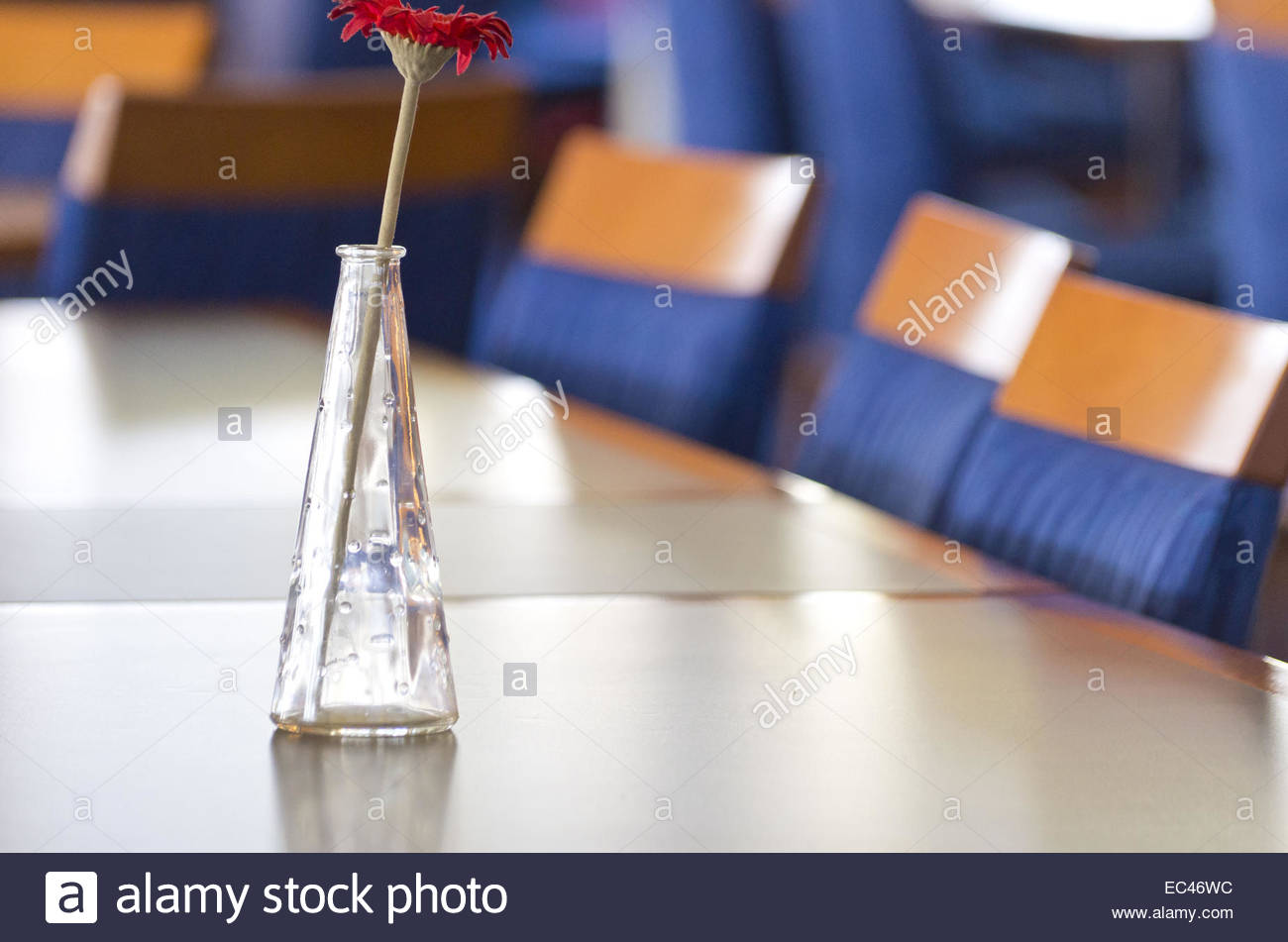 Artifical flower in a vase in a mess hall environment - Stock Image