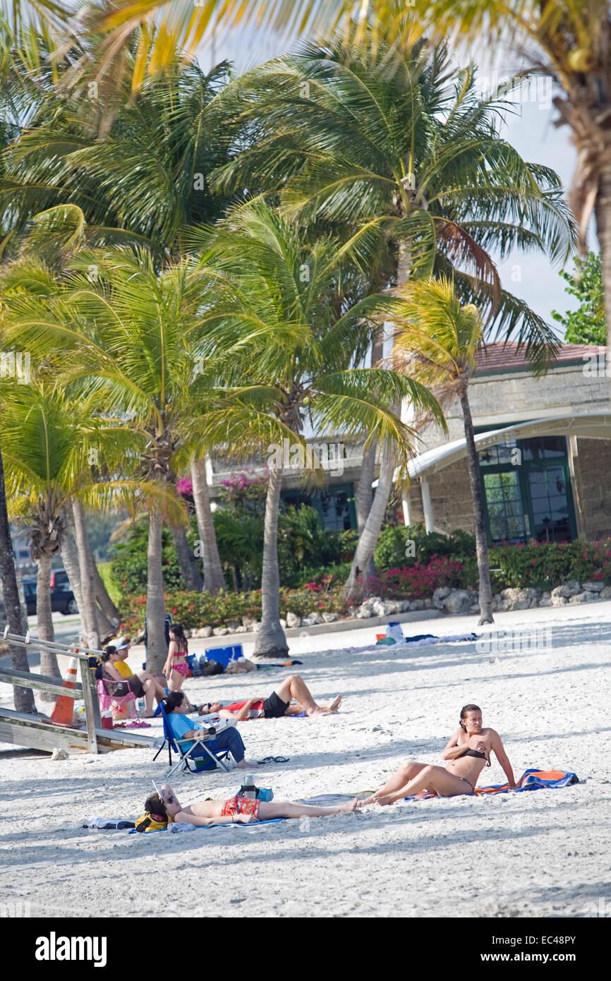 Beach, Matteson Hammock Beach Park, Miami, Florida, USA - Stock Image