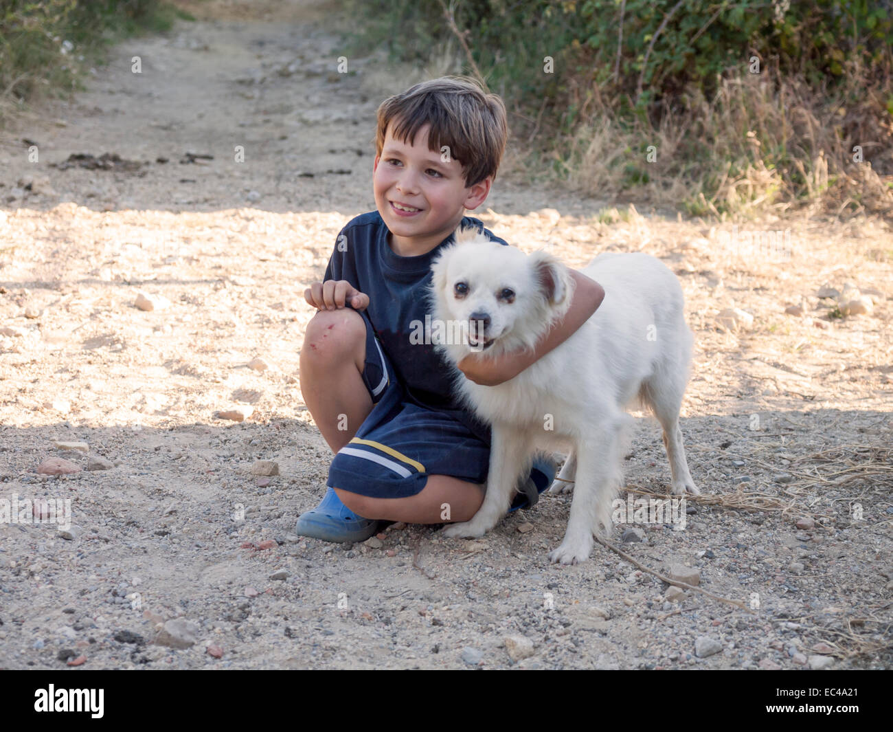 boy child with dog in the countryside - Stock Image