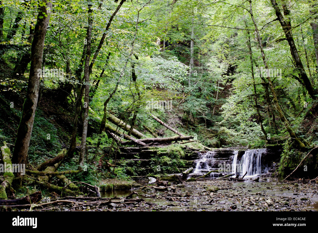 Gauchach Gorge - Stock Image
