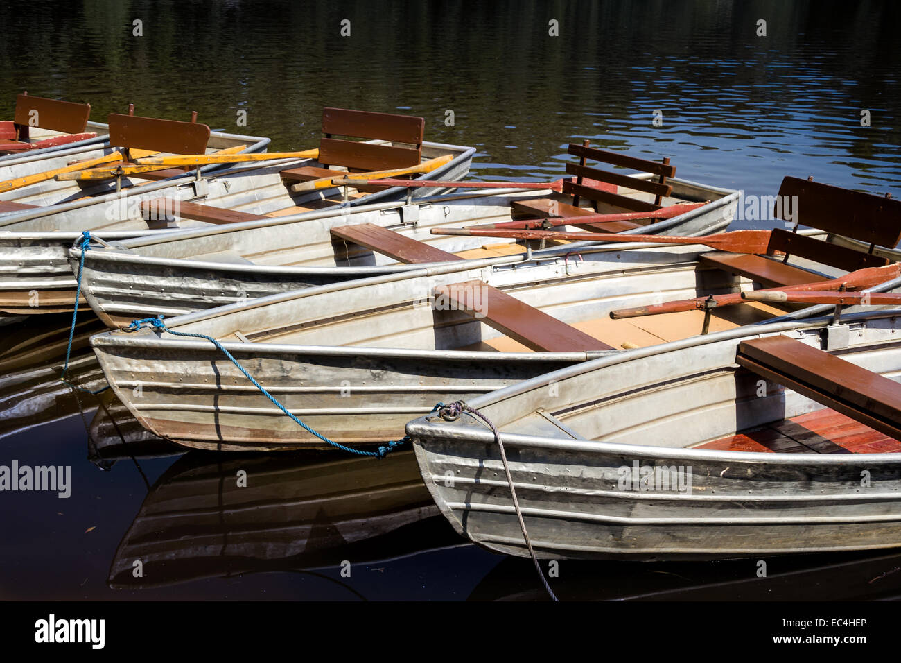 Empty rowboats at a lake in a row with copy space - Stock Image