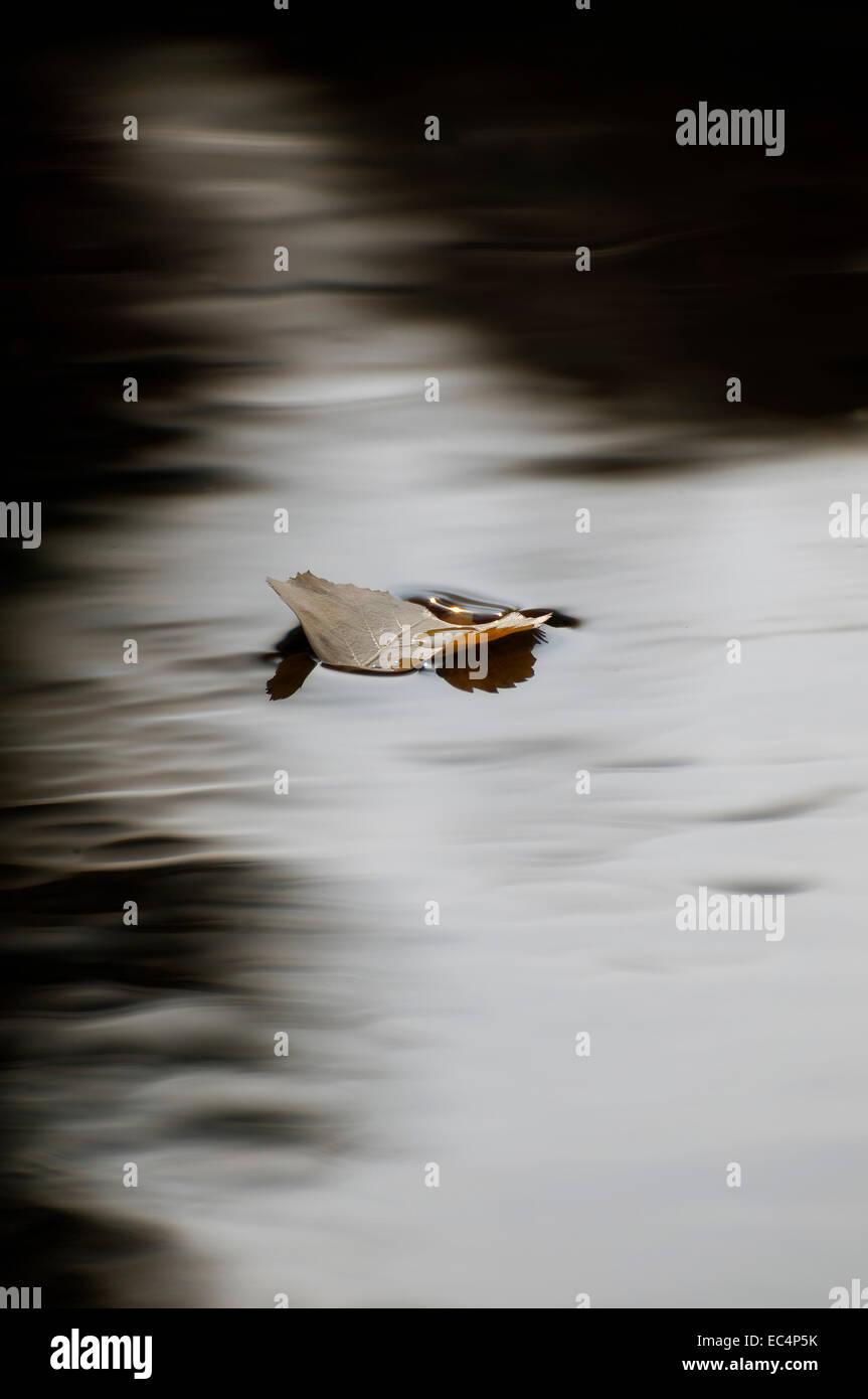 melancholy - Stock Image