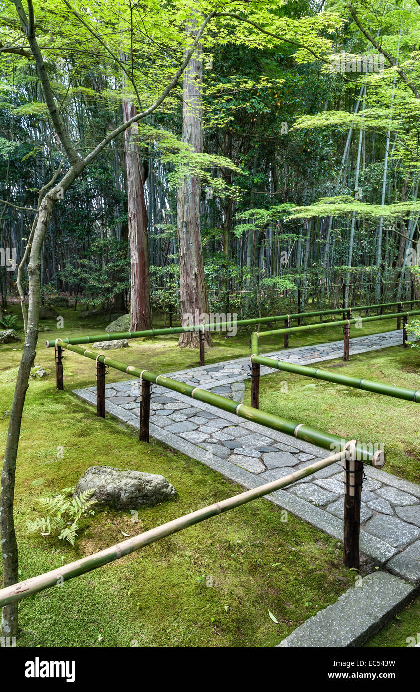 Koto-in zen temple, Daitoku-ji, Kyoto, Japan. The entrance path from the main gate leads through a bamboo grove - Stock Image