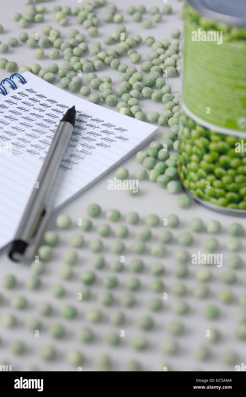 Pea counters workplace - Stock Image