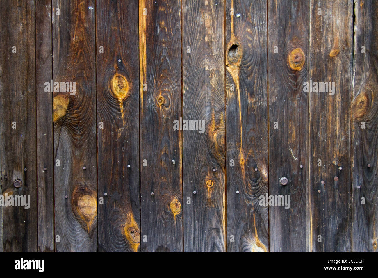 wooden boards with knotholes Stock Photo