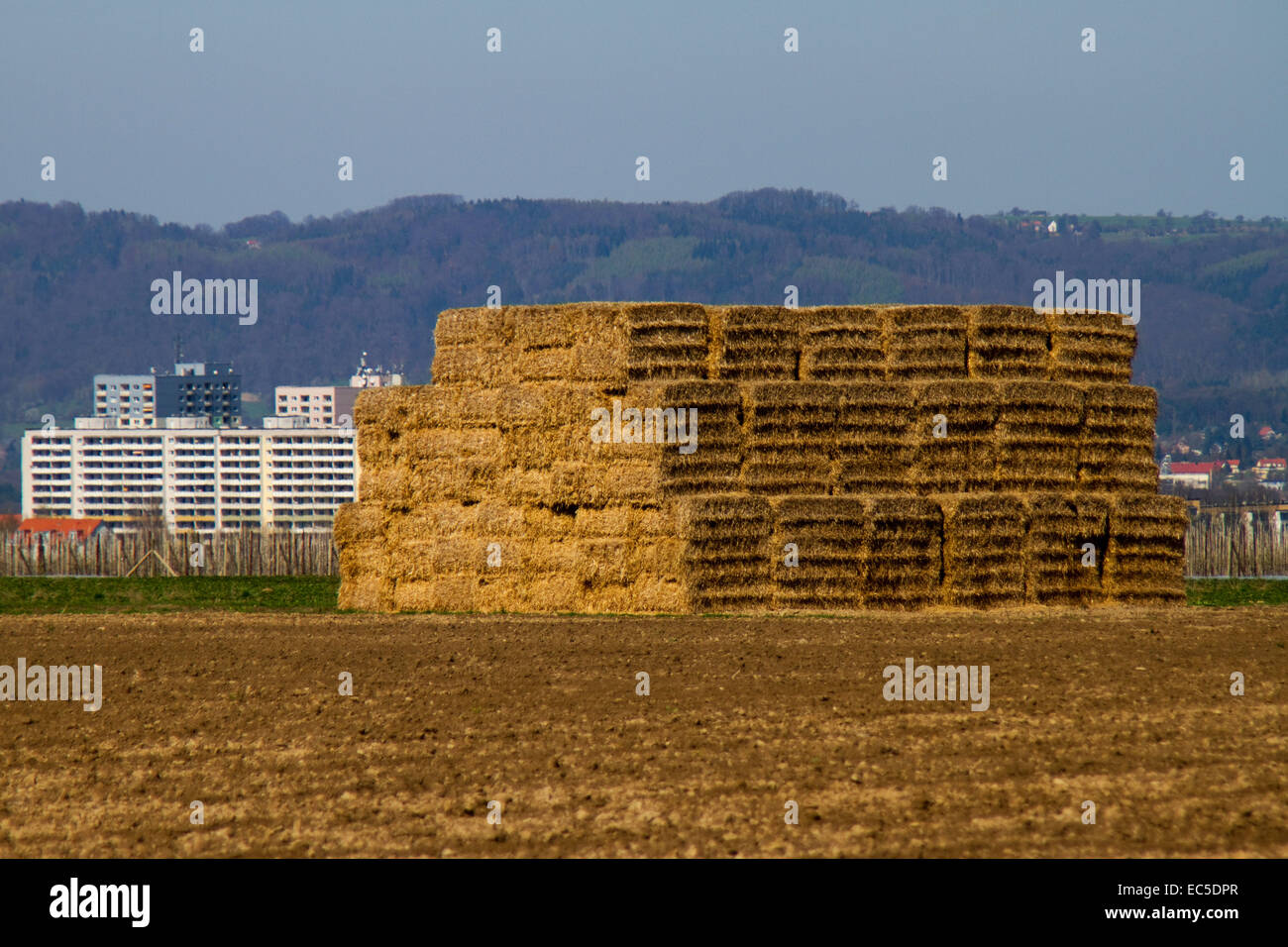 bales of straw on the outskirts of a city Stock Photo