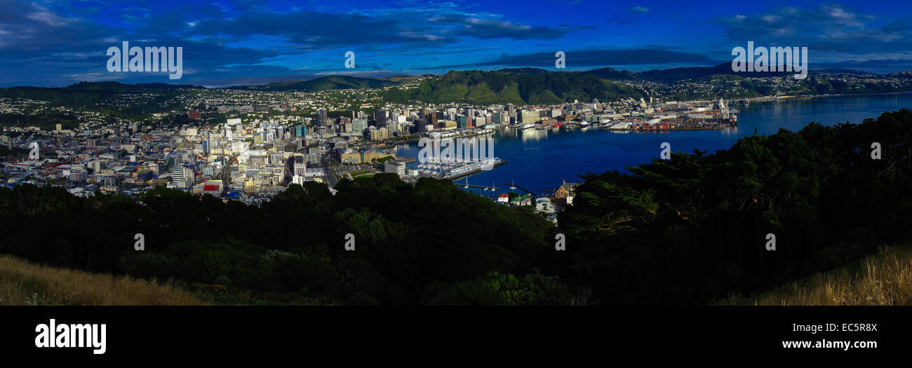 Panorama Wellington from above - Stock Image
