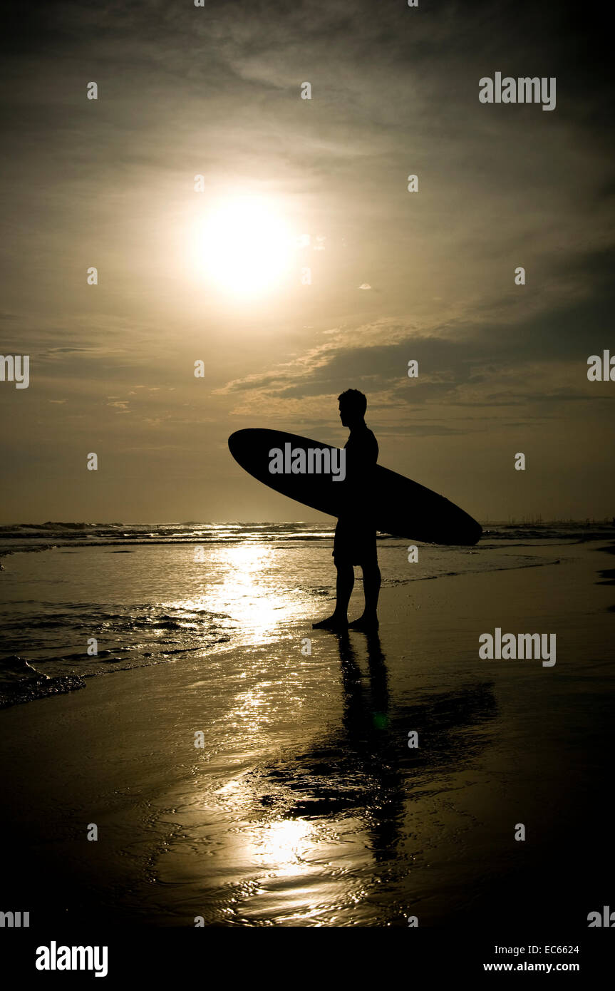 surfer at the beach - Stock Image