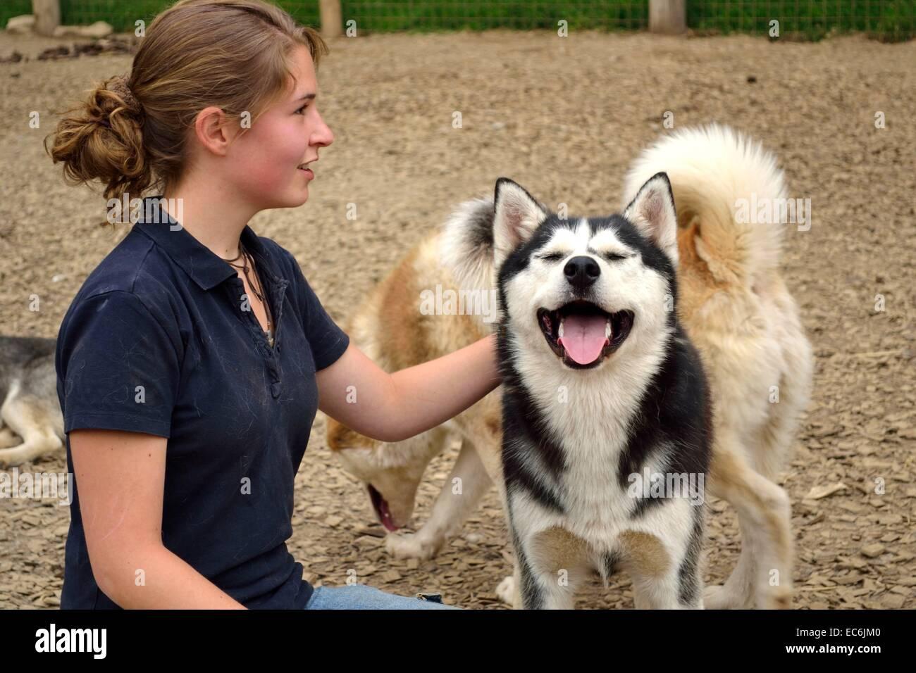 Teens cuddling Husky - Stock Image