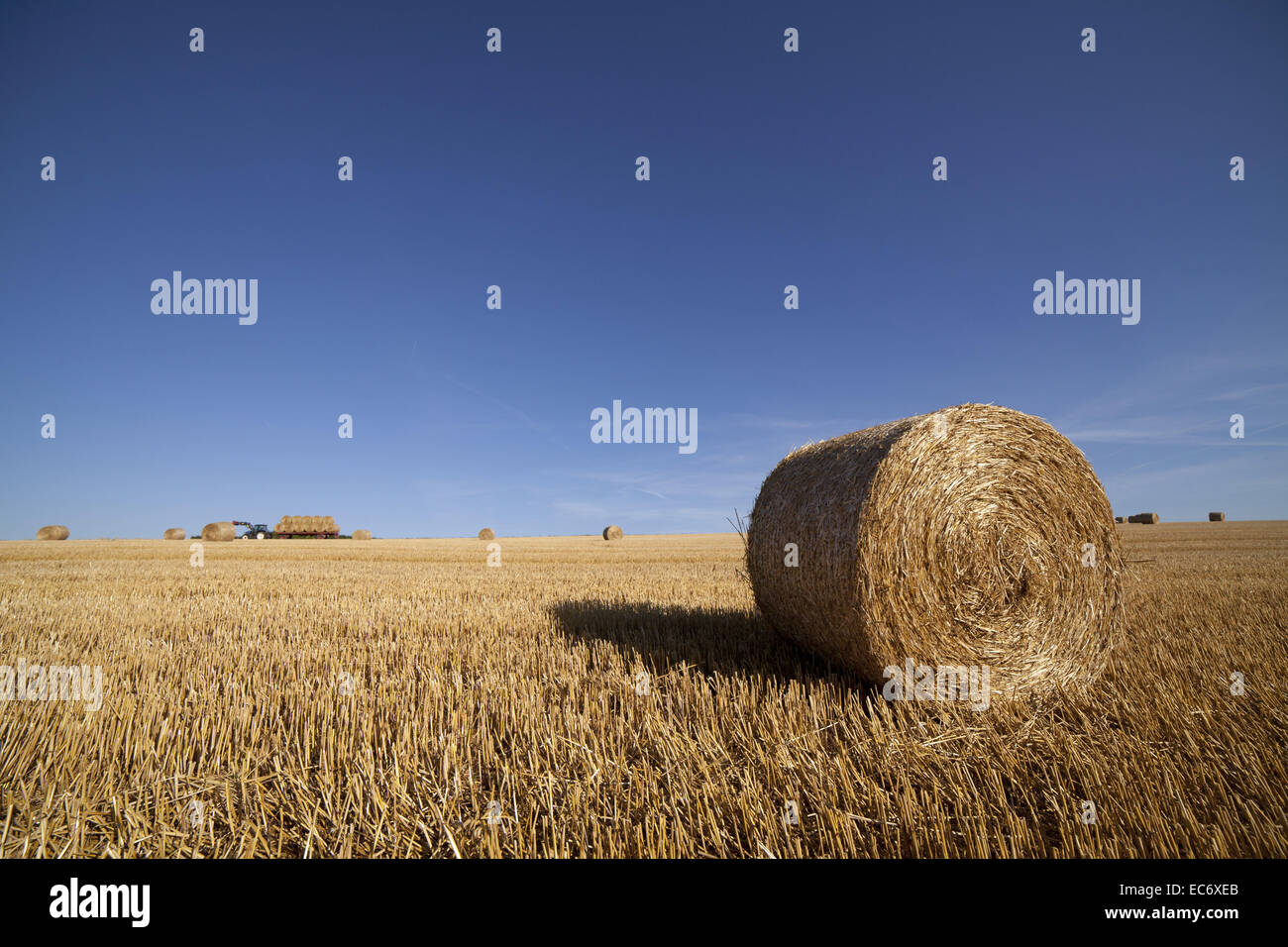 Straw bale with tractor in backround. Wideangle shot - Stock Image
