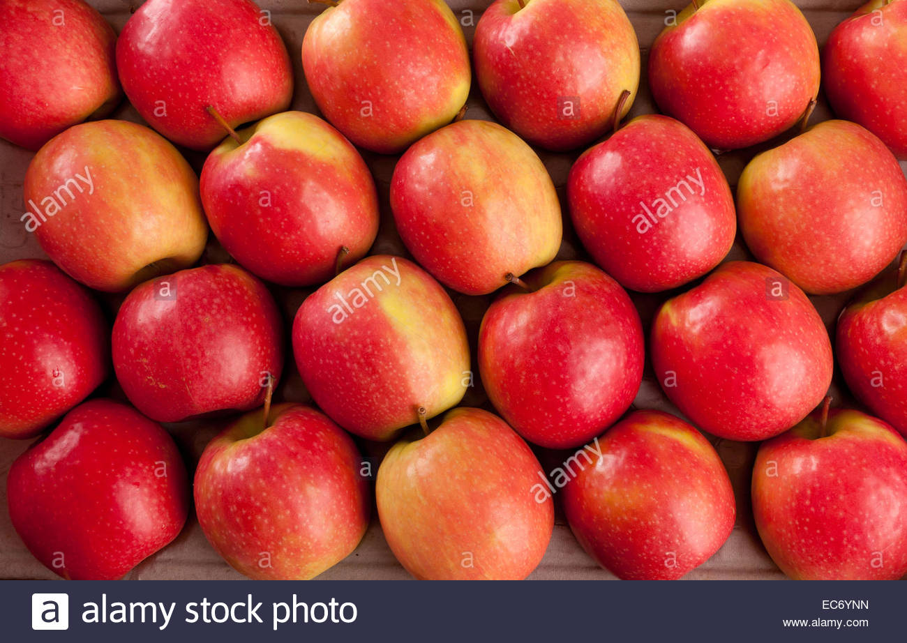 natural wallpaper of red apples stock photo: 76370833 - alamy