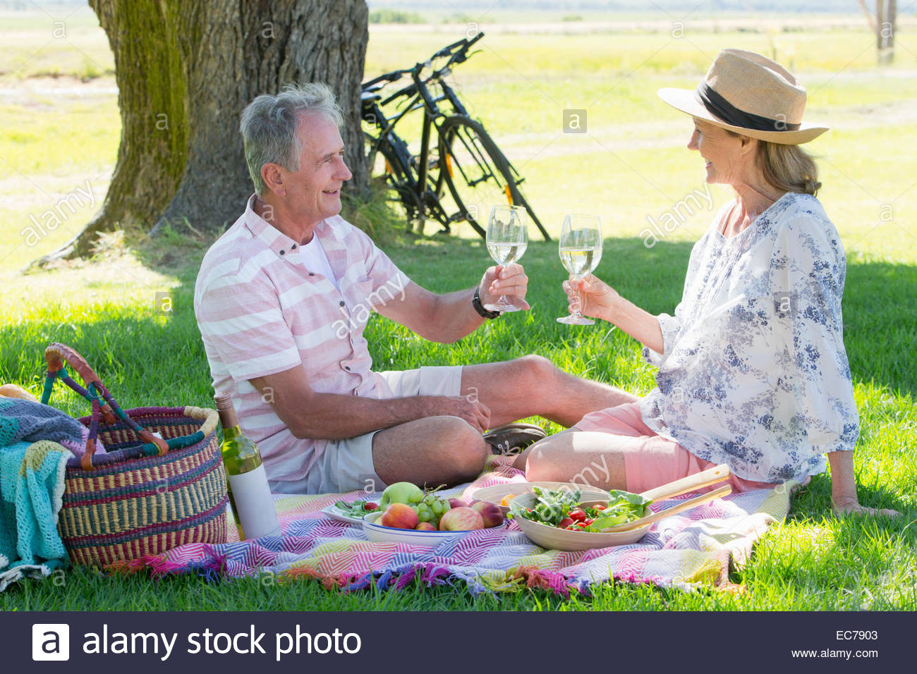 Senior couple drinking wine sitting on picnic blanket - Stock Image