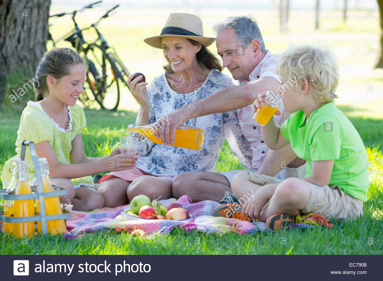 Children and grandparents having a picnic in countryside - Stock Image