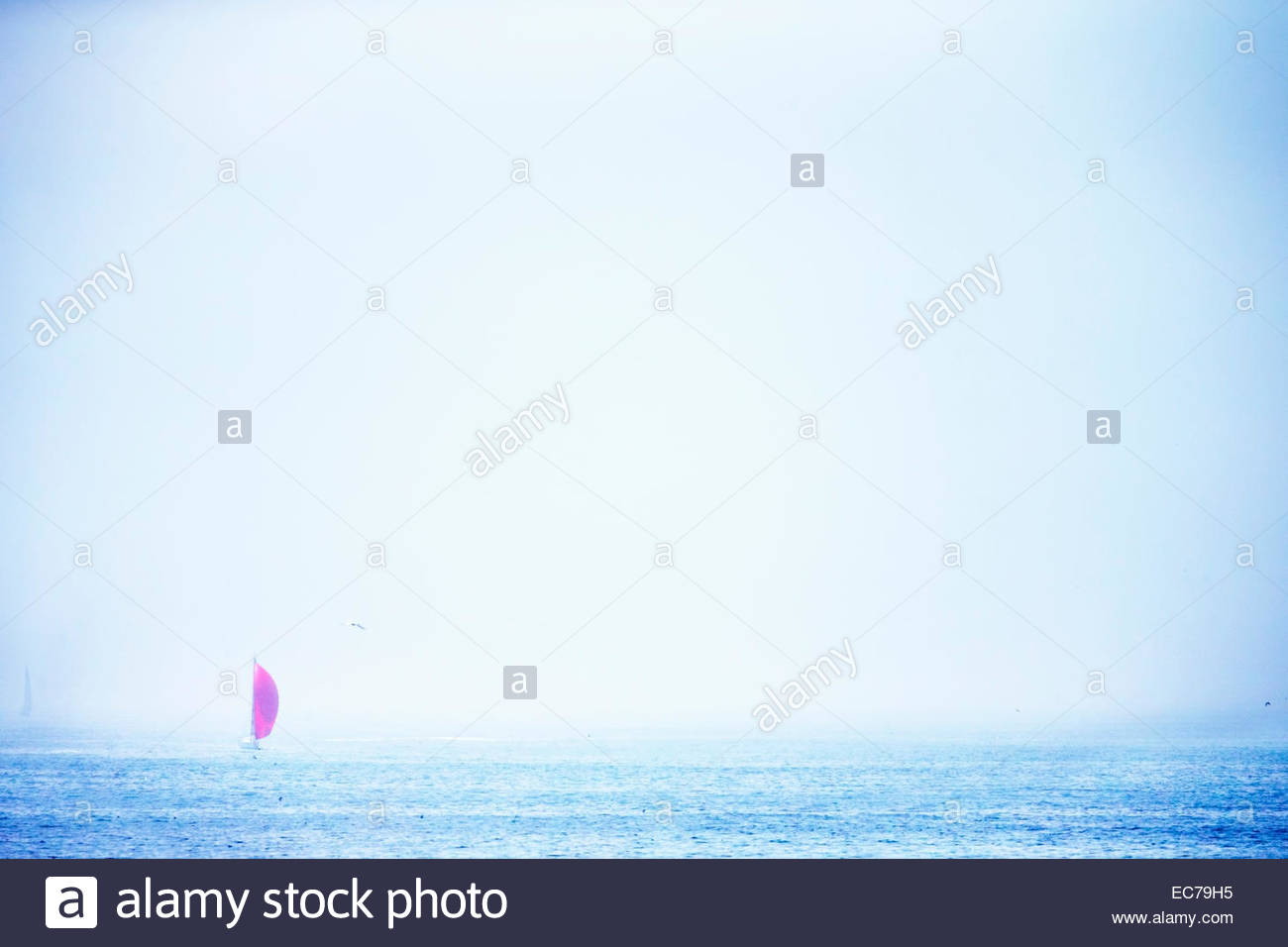Red sail boat in the distance at sea - Stock Image
