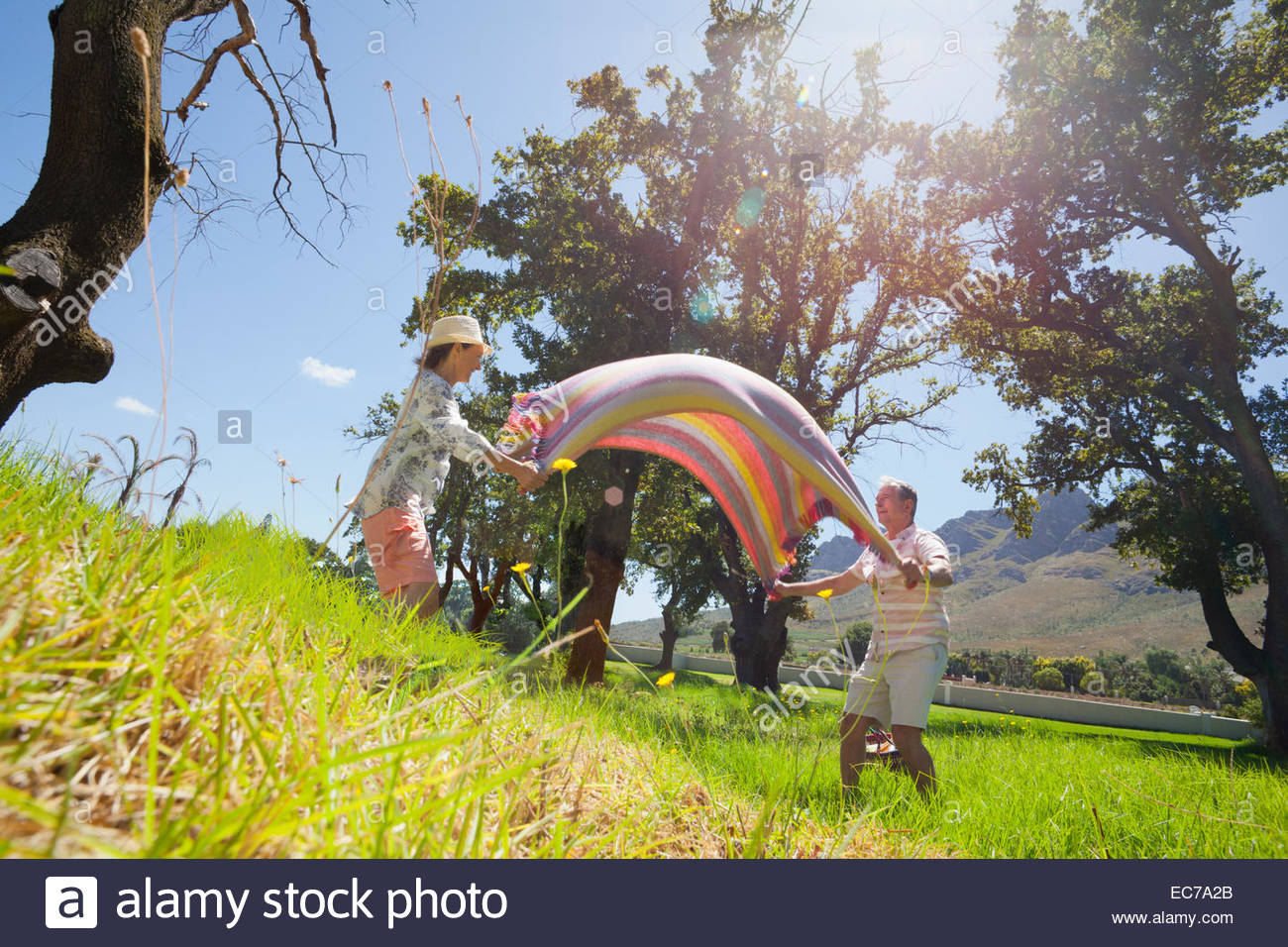 Senior couple laying picnic blanket in field - Stock Image