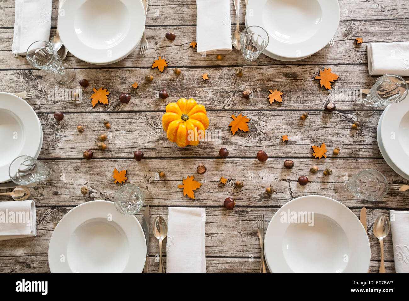 Autumnal laid table with yellow pumpkin, chestnuts and acorns - Stock Image