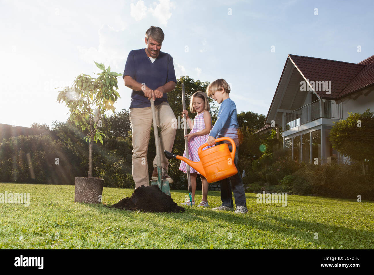 Father and children planting tree in garden - Stock Image